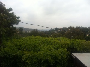 View from Laurel Canyon to Hollywood