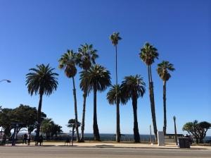 Palisades Park at Santa Monica