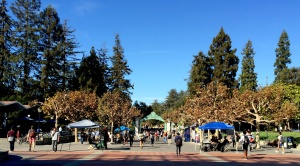 Berkeley University campus gates
