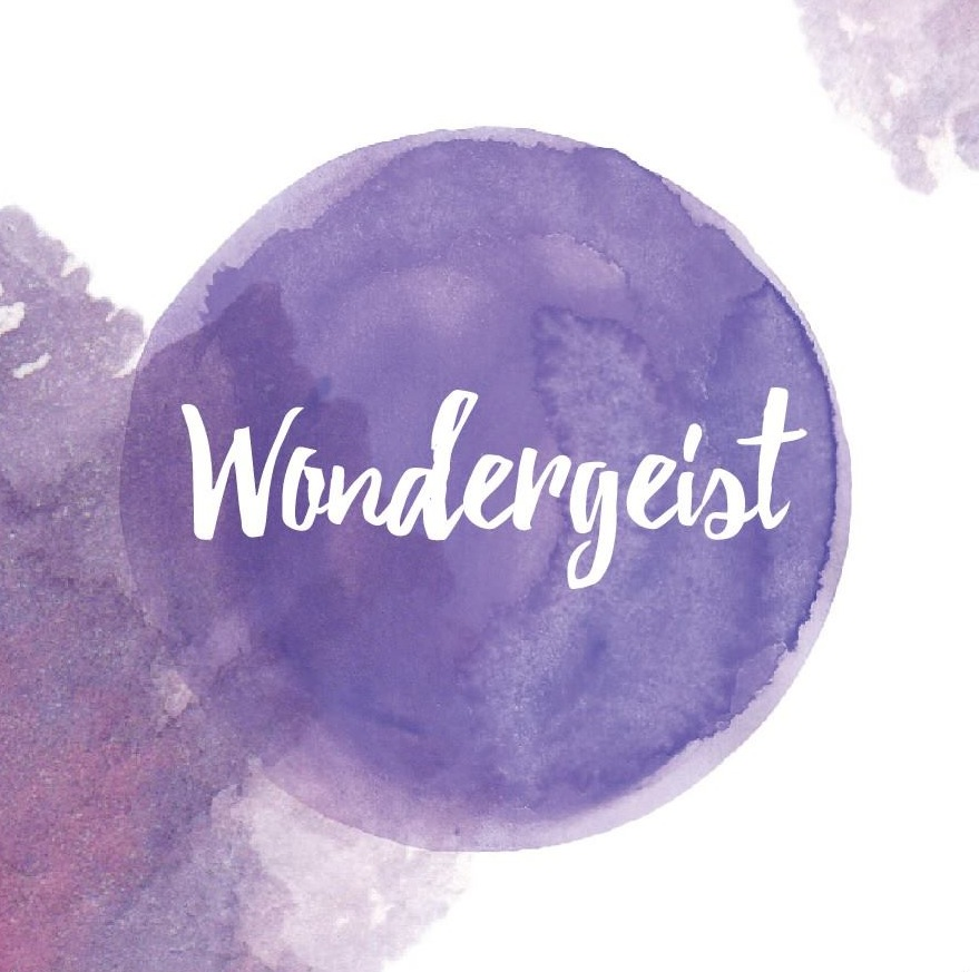 Wondergeist album cover