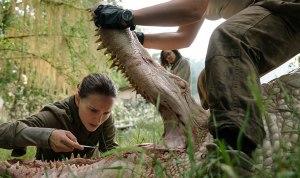Annihilation - crocodile and Natalie Portman