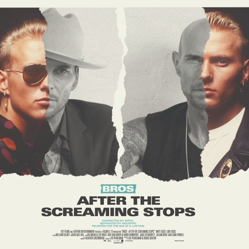 Bros: After The Screaming Stops poster