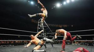 ladder match 2