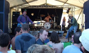 Toupe - Vale Earth Fair 2007