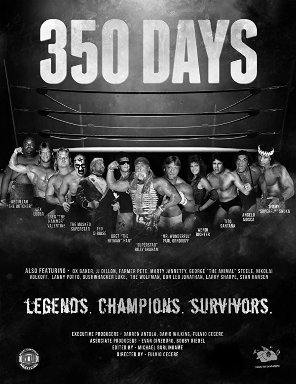 350 Days - poster